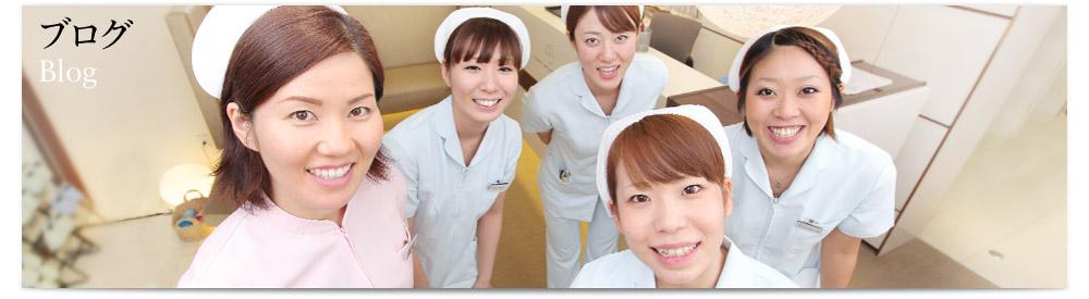 +Staff Blog / スタッフブログ